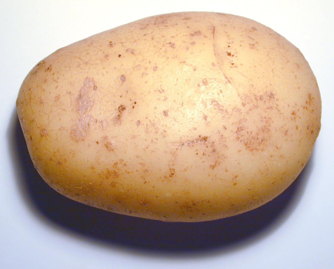 Ensalada de patata y arroz