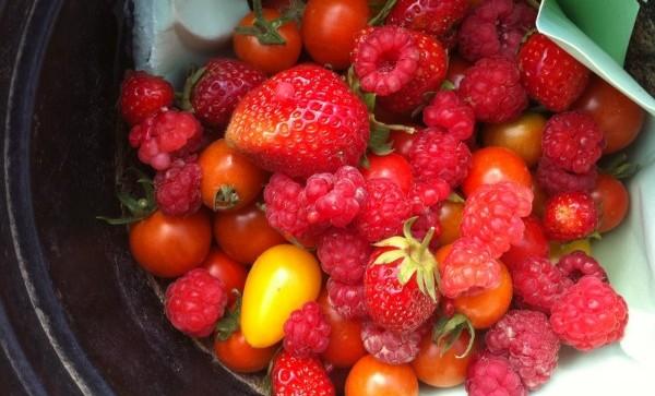 Frambuesas y Tomatitos con Picado de Avellanas