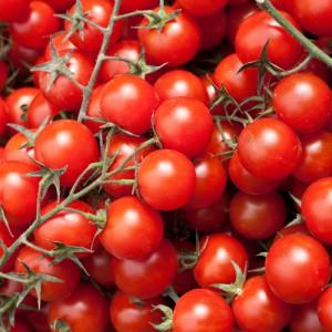 Tomates cherry a la plancha con aceite de orégano y tomillo